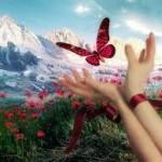 Affetmek ve affedememek(üzerinizdeki etkilerini merak ettinizmi?)