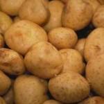 Barsak kanserini önleyici patates kürü(Dr.İbrahim Saraçoğlu)