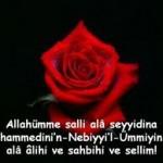 Kutlu Doğum Haftası;Efendimiz Hz.Muhammed Mustafa (s.a.v)
