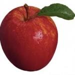 Yediğiniz Meyveler Çokmu Gaz Yapıyor? Dr.Ender Saraç Önerileri