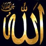 Adam Allah'a soruyor