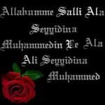 Haydi Salavat'a arkadaşlar