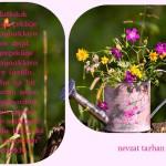 Mutluluk dış gerçekliğe ve kaynaklara göre değil.....Prof.Dr.Nevzat Tarhan