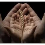 Fatiha suresi ile mal mülk kazanma