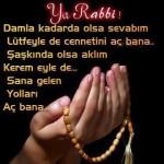Ya Rabbi !