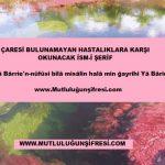 Zor ve Müzmin Hastalıklara Karşı Okunacak Dua(Ya Bari c.c)